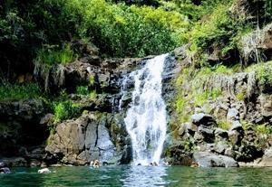 ノースショアでたっぷりの大自然に触れる!癒しの渓谷ワイメアバレー・ハイキングとノースショア観光
