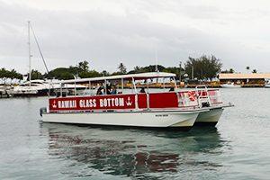 【期間限定】家族や友達と楽しもう♪海の中を覗きながら移動する「グラスボトムボートツアー」