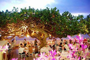 ハウツリー・ラナイでロマンチックなデイナーを♪「ディナー&シティー・ライト・タンタラス・ハウツリー・ラナイ」のご紹介