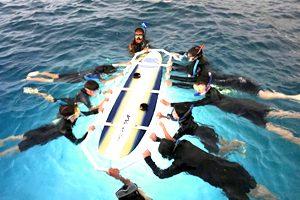 <ハワイ島>野生のマンタと夜の海で泳ぐ!!マサシのマンタじゃナイトツアー