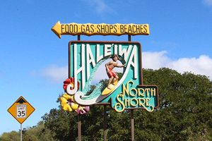 三世代で過ごすハワイの夏休み!オアフ島半日散策で時間を有効活用しよう!ノースショア半日観光ツアー♪